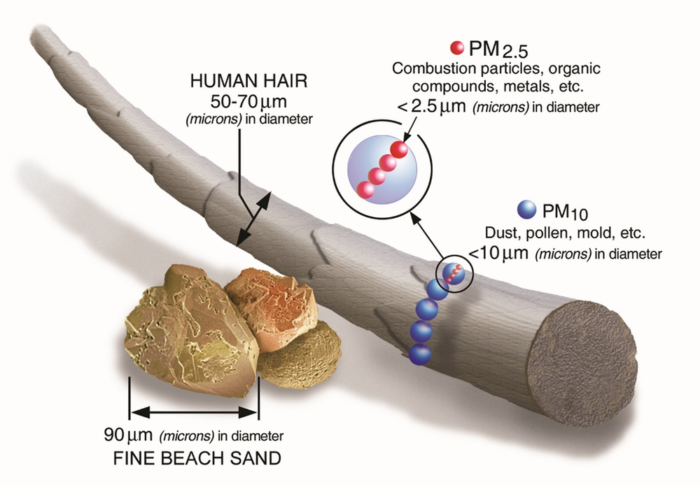 A visual picturisation of the size of PM2.5 and PM10 in comparison with other objects. Image Courtesy: epa.gov